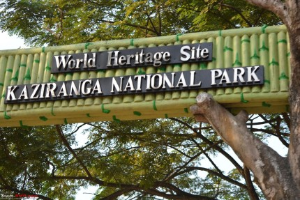 Animals Threatened by Shops and Dhabas at Kaziranga, NGT Seeks Demolition
