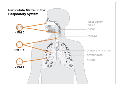 Air Pollution & Respiratory Diseases