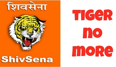 How The NCP and The Congress Cooked Shiv Sena@@@s Goose
