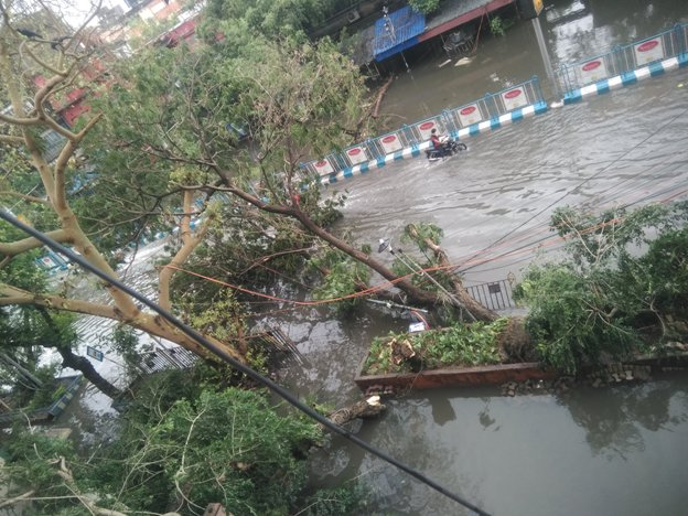 Death And Destruction In West Bengal In The Wake Of Cyclone Amphan