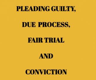 Kerala HC Prescribes Guideline To Follow In Case Of Guilty Plea