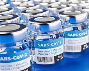 Availability Of Covid Vaccines: Government Provides A Clear Roadmap