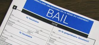 The Case Diary and Bail Applications