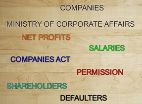 Good Companies Free To Raise Salaries Without Threshold If Shareholders Permit